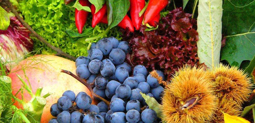 genova.-frutta-e-verdura-1.-italia.-2005
