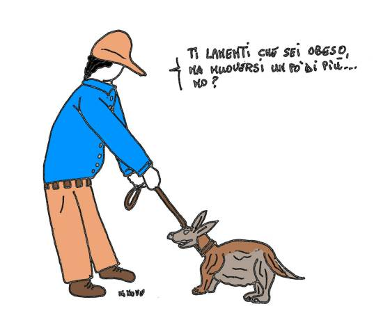 21 maggio - Cani e gatti obesi... anche loro