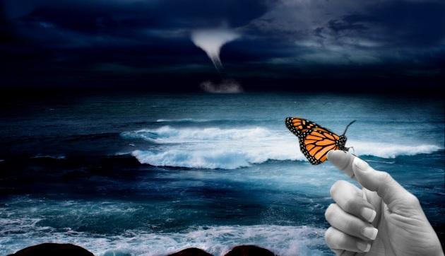 butterfly_630x360