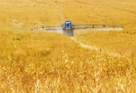 agricoltura_439.jpg