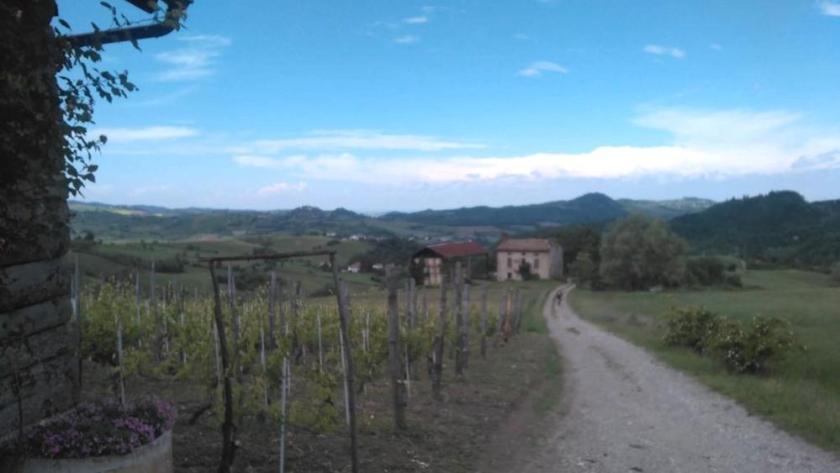colline e vigneti-kgiF-U11003788190235jBE-1024x576@LaStampa.it.jpg