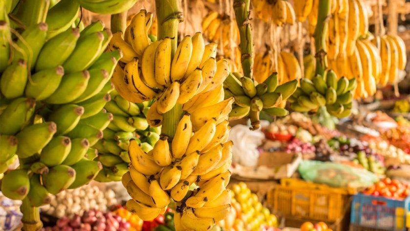 banane-1024x576.jpg
