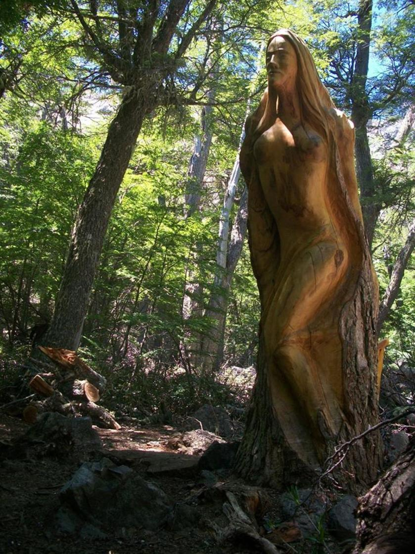 foresta02.jpg