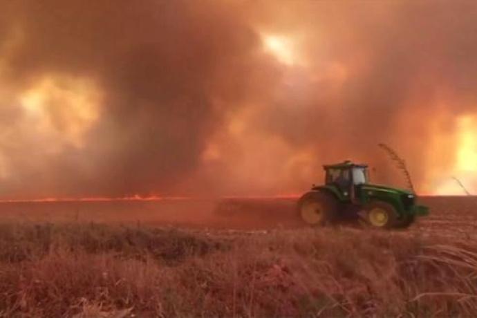 incendi-amazzonia-1.jpg