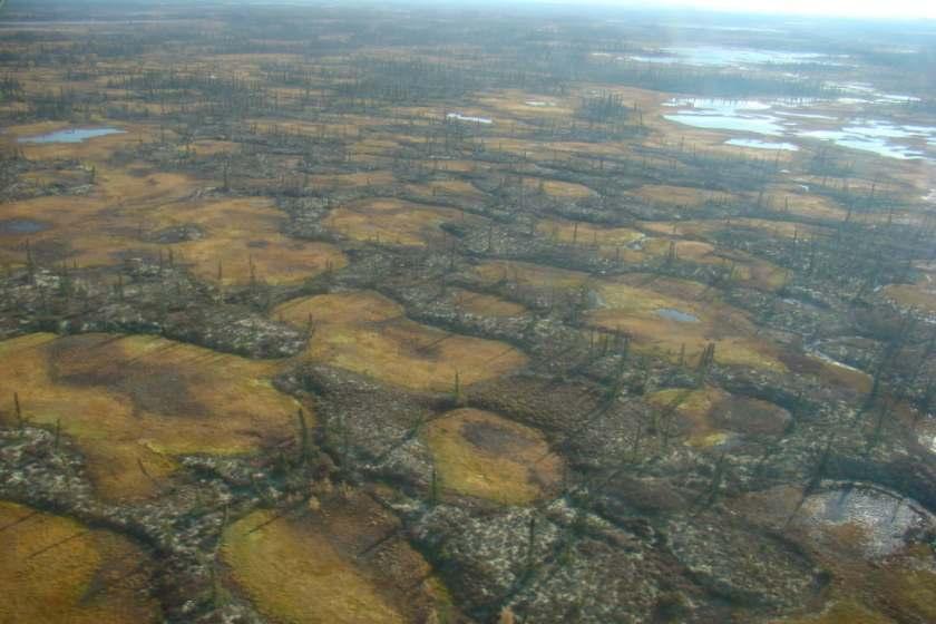 artico-buchi-permafrost